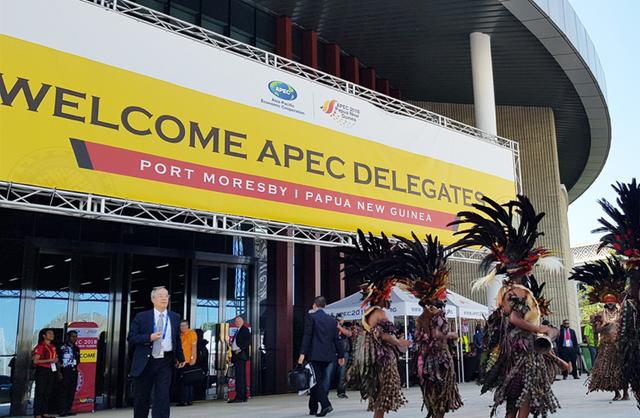 Những điều thú vị của nền kinh tế nước chủ nhà APEC năm 2018 - Ảnh 3.