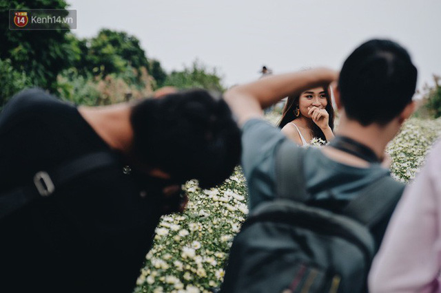 Vườn cúc hoạ mi ở Hà Nội thất thủ cuối tuần: 1 mét vuông có chục nhiếp ảnh gia và mẫu - Ảnh 11.
