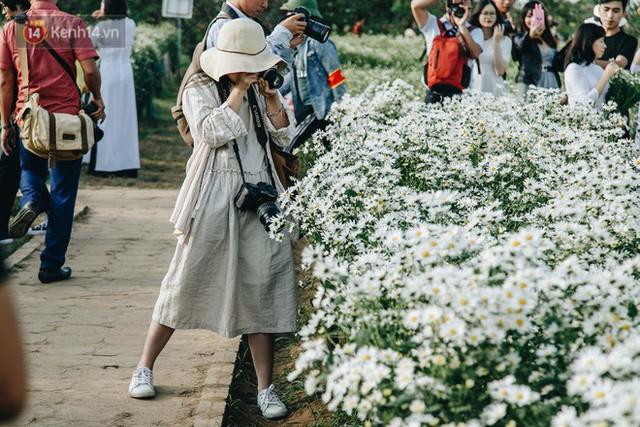 Vườn cúc hoạ mi ở Hà Nội thất thủ cuối tuần: 1 mét vuông có chục nhiếp ảnh gia và mẫu - Ảnh 7.