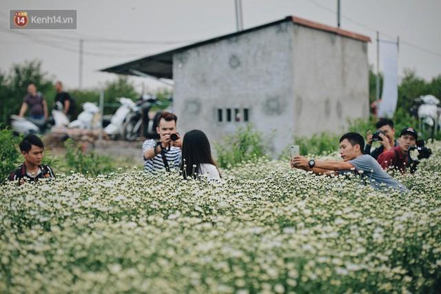 Vườn cúc hoạ mi ở Hà Nội thất thủ cuối tuần: 1 mét vuông có chục nhiếp ảnh gia và mẫu - Ảnh 10.