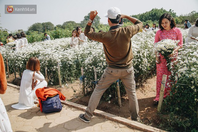 Vườn cúc họa mi ở Hà Nội tiếp tục thất thủ: Đường vào tắc nghẽn, chụp một bức ảnh phải né bao nhiêu người - Ảnh 13.