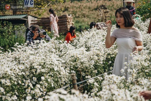 Vườn cúc họa mi ở Hà Nội tiếp tục thất thủ: Đường vào tắc nghẽn, chụp một bức ảnh phải né bao nhiêu người - Ảnh 15.