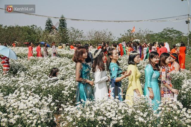 Vườn cúc họa mi ở Hà Nội tiếp tục thất thủ: Đường vào tắc nghẽn, chụp một bức ảnh phải né bao nhiêu người - Ảnh 17.