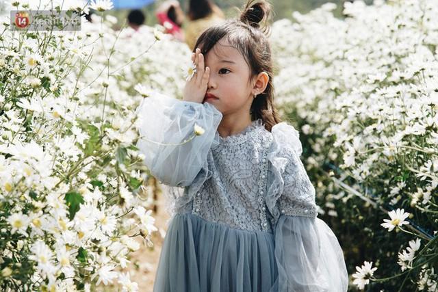 Vườn cúc họa mi ở Hà Nội tiếp tục thất thủ: Đường vào tắc nghẽn, chụp một bức ảnh phải né bao nhiêu người - Ảnh 21.