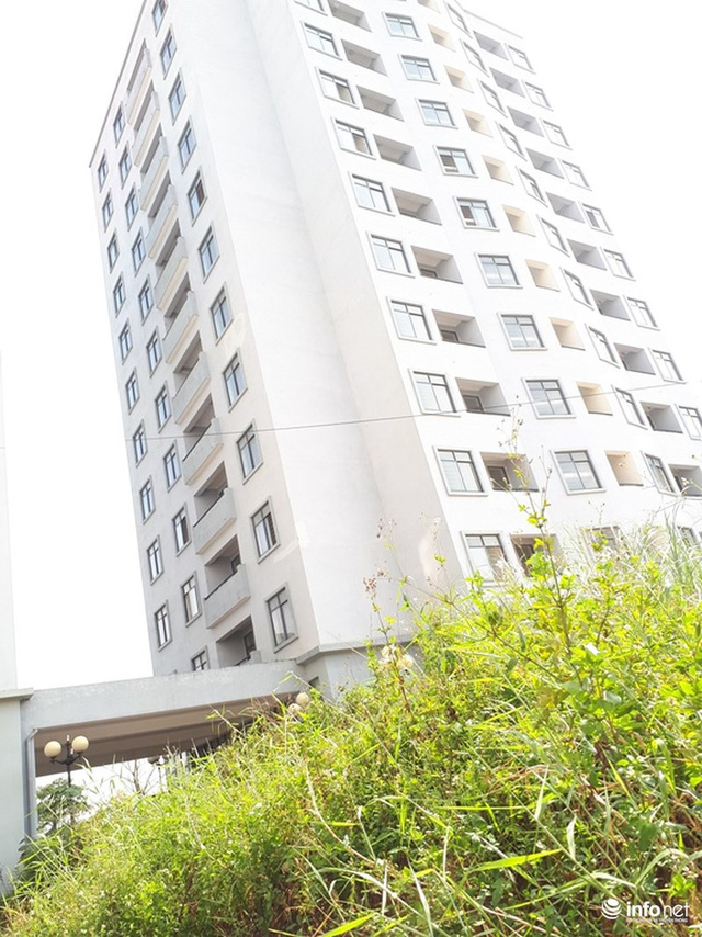 Trăm căn hộ cao tầng tái an cư mới tinh biến thành nhà ma hoang phế giữa Hà Nội - Ảnh 2.