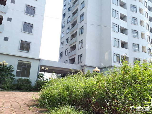 Trăm căn hộ cao tầng tái an cư mới tinh biến thành nhà ma hoang phế giữa Hà Nội - Ảnh 3.