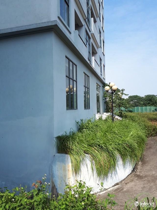 Trăm căn hộ cao tầng tái an cư mới tinh biến thành nhà ma hoang phế giữa Hà Nội - Ảnh 7.