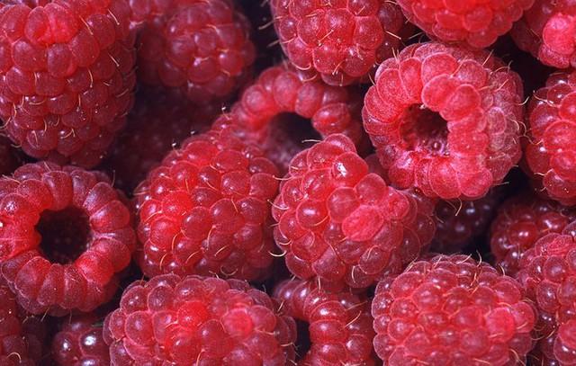 Chúng ta đều biết tất cả trái cây đều mang lại lợi ích cho cơ thể, nhưng loại quả này mới giành chức vô địch về hàm lượng chất dinh dưỡng - Ảnh 3.