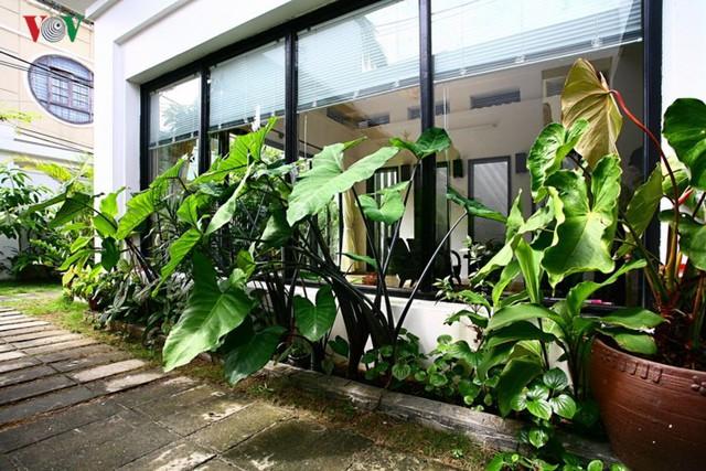 Ngôi nhà giản dị của 1 nhà giáo ở Đà Nẵng - Ảnh 4.