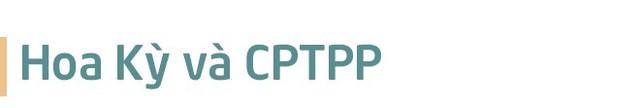 Những điều bỏ ngỏ trong báo cáo thuyết minh về CPTPP của Chính phủ - Ảnh 7.