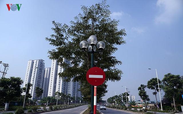 Cận cảnh phố 8 làn xe ở Hà Nội được đề xuất đặt tên Trịnh Văn Bô - Ảnh 11.