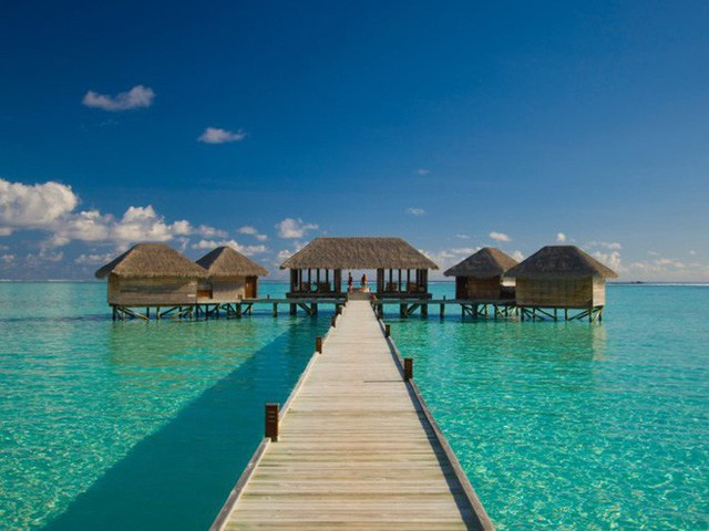 Bên trong khách sạn dưới biển đầu tiên trên thế giới, nơi bạn có thể ngủ cạnh cá mập với chi phí 1 tỷ/1 đêm - Ảnh 2.