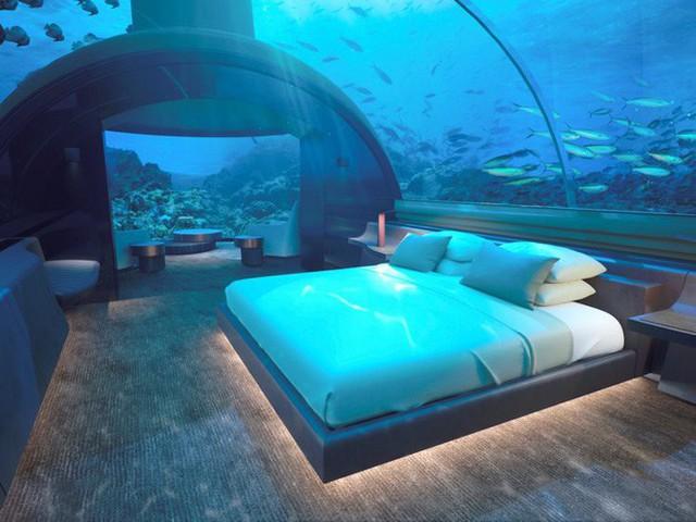 Bên trong khách sạn dưới biển đầu tiên trên thế giới, nơi bạn có thể ngủ cạnh cá mập với chi phí 1 tỷ/1 đêm - Ảnh 7.