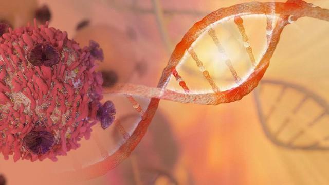 Các nhà khoa học tìm thấy một mã tự hủy mà tế bào ung thư không thể kháng lại, hứa hẹn chấm dứt lịch sử hóa trị - Ảnh 1.