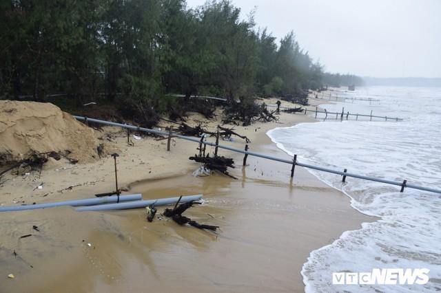 Ảnh: Kè cứng dang dở, sóng lớn đánh tan nát bờ biển xã đảo ở Quảng Nam - Ảnh 10.