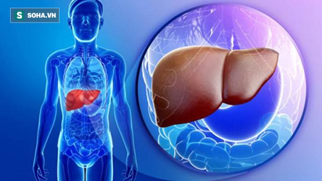 3 mốc vàng để chăm sóc gan khỏe mạnh nhất: Người ít mắc bệnh thường tuân thủ điều này - Ảnh 1.