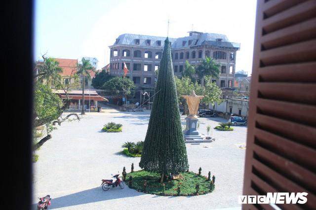 Ảnh: Cây thông Noel khổng lồ cao 12m mừng lễ Giáng sinh ở Hà Nội - Ảnh 2.