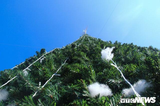 Ảnh: Cây thông Noel khổng lồ cao 12m mừng lễ Giáng sinh ở Hà Nội - Ảnh 4.