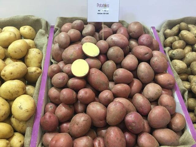 Đầu bếp 5 sao tiết lộ cách chế biến khoai tây chuẩn: Nhiều người giật mình vì toàn làm sai - Ảnh 1.