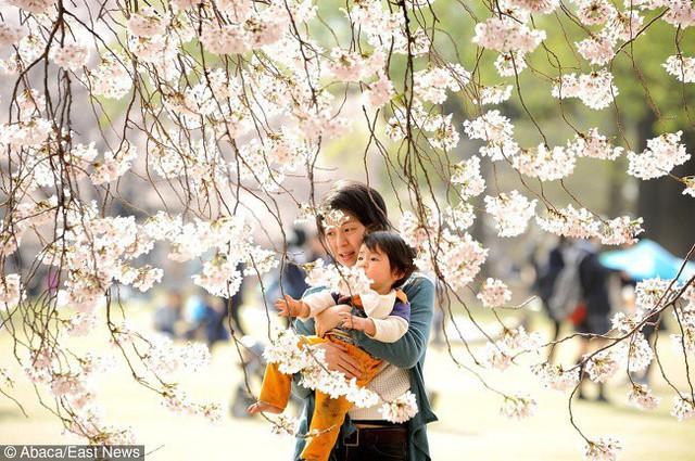 5 quy tắc nuôi dạy con của cha mẹ Nhật mà mọi phụ huynh nên học hỏi - Ảnh 1.