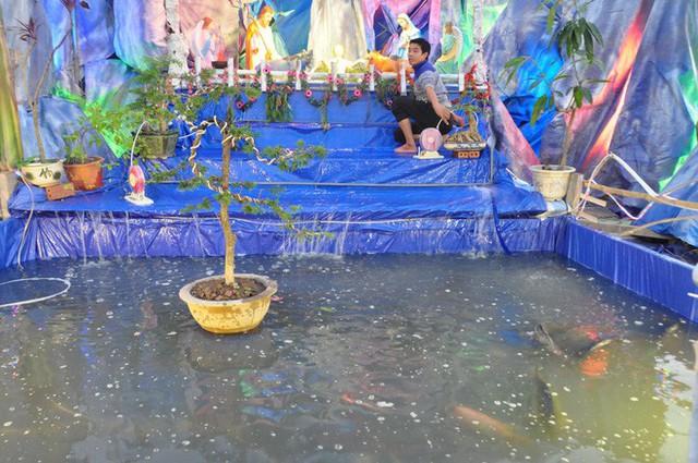 Lạ mắt hang đá đêm Noel được trang trí bể cá, với cá sấu hỏa tiễn 12kg ở Nam Định - Ảnh 21.