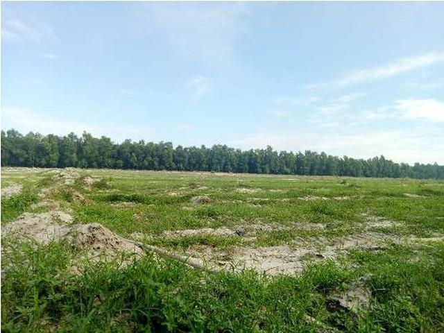 Thanh tra vào cuộc vụ Công ty Địa ốc City Land bán đất nền trái luật - Ảnh 2.