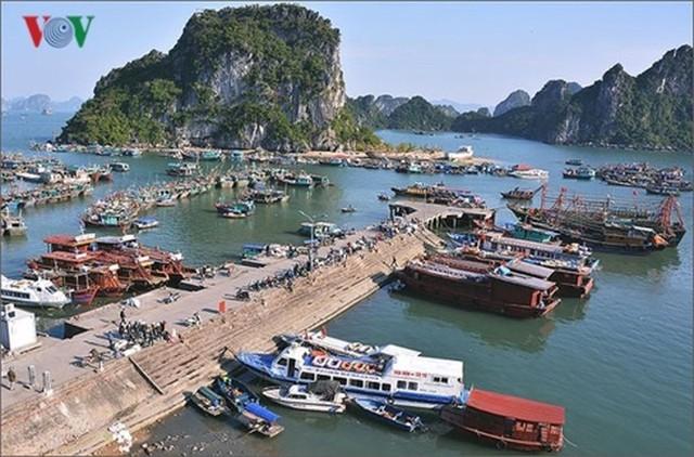 Ngắm toàn cảnh cao tốc Hạ Long - Vân Đồn 12.000 tỷ xuyên vùng Đông Bắc  - Ảnh 19.
