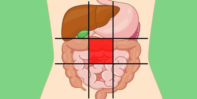 Nhờ bản đồ bụng này mà bạn sẽ biết các cơn đau ở mỗi vị trí trên bụng là do nguyên nhân nào gây ra - Ảnh 5.