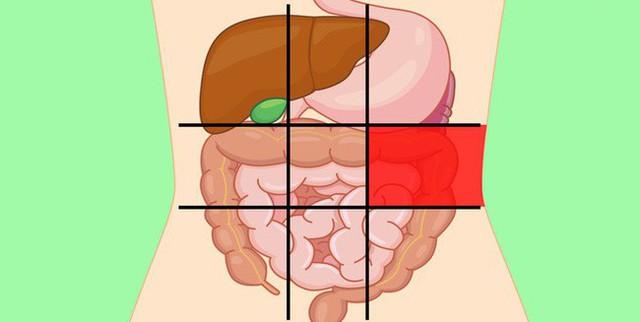 Nhờ bản đồ bụng này mà bạn sẽ biết các cơn đau ở mỗi vị trí trên bụng là do nguyên nhân nào gây ra - Ảnh 6.