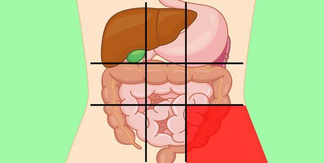Nhờ bản đồ bụng này mà bạn sẽ biết các cơn đau ở mỗi vị trí trên bụng là do nguyên nhân nào gây ra - Ảnh 9.