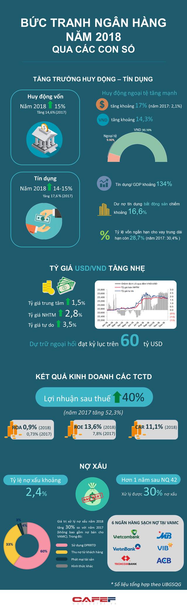 [Infographic] Bức tranh ngân hàng năm 2018 qua các con số - Ảnh 1.