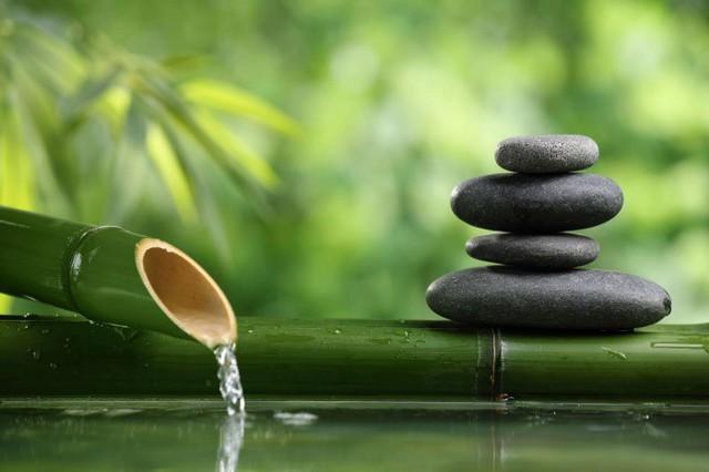Nếu muốn thành công và hạnh phúc, hãy buông tay 9 điều này: Càng lưu tâm, càng vướng bận! - Ảnh 3.