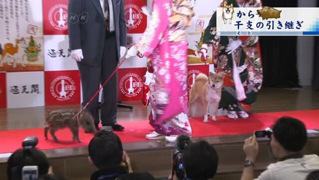 Người Nhật rộn ràng trong ngày làm việc cuối năm, chuẩn bị tiễn năm Chó đón năm mới Lợn rừng - Ảnh 1.