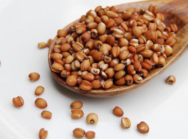 5 thực phẩm tẩy sạch ruột, loại bỏ dầu mỡ, giải độc: Ai ăn đều ruột sẽ được vệ sinh - Ảnh 3.