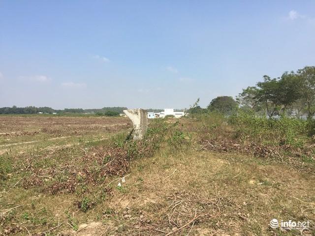 """Đô thị """"ma"""" Nhơn Trạch, Đồng Nai: La liệt dự án bỏ hoang, chung cư không người ở - Ảnh 1."""