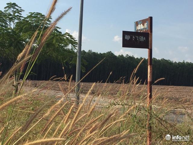 """Đô thị """"ma"""" Nhơn Trạch, Đồng Nai: La liệt dự án bỏ hoang, chung cư không người ở - Ảnh 18."""