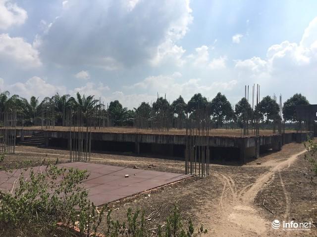 """Đô thị """"ma"""" Nhơn Trạch, Đồng Nai: La liệt dự án bỏ hoang, chung cư không người ở - Ảnh 10."""
