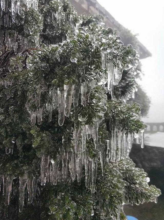 Hình ảnh băng tuyết bao phủ đỉnh Mẫu Sơn trong ngày rét đỉnh điểm - Ảnh 11.