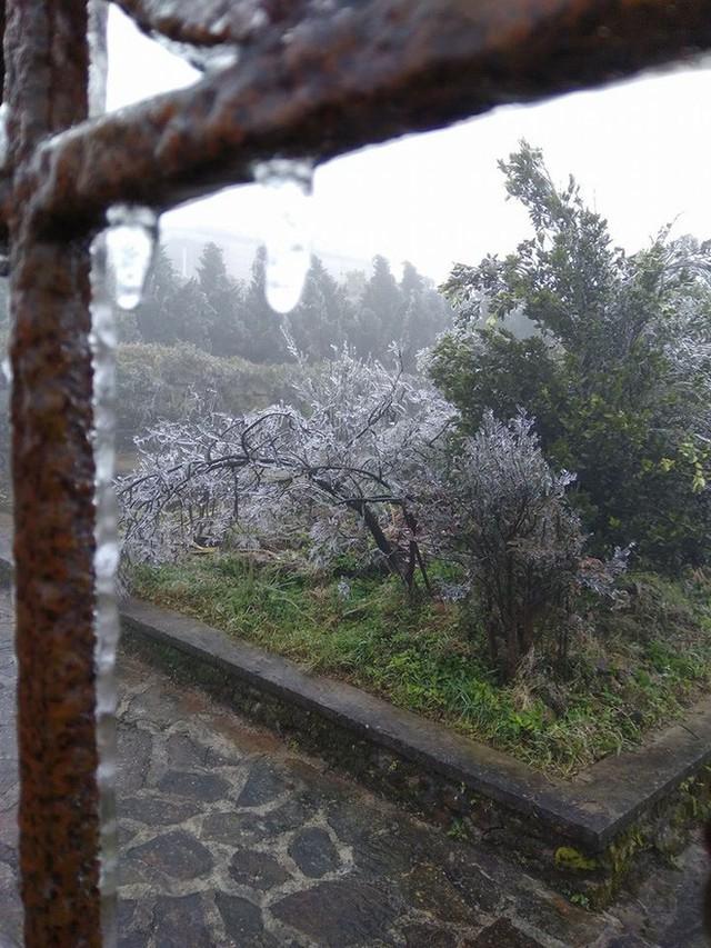 Hình ảnh băng tuyết bao phủ đỉnh Mẫu Sơn trong ngày rét đỉnh điểm - Ảnh 15.