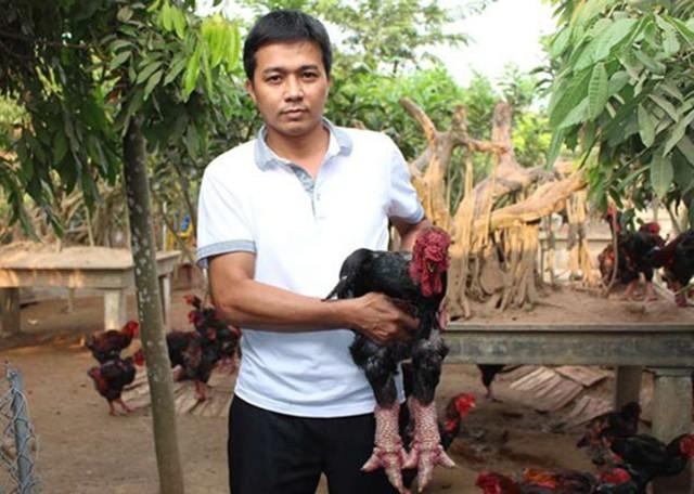 Thực hư chuyện gà Đông Tảo giá vài chục triệu đồng/con làm quà Tết - Ảnh 4.