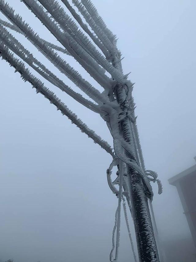 Băng tuyết phủ trắng nhà cửa, xe cộ ở đỉnh Mẫu Sơn - Ảnh 10.