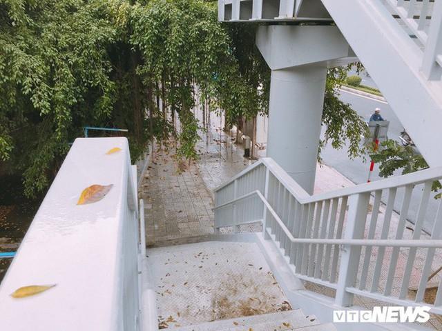 Ảnh: Cầu vượt đi bộ đầu tiên ở Đà Nẵng - Ảnh 4.