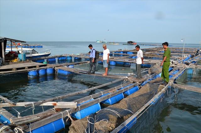 Nghề nuôi cá bạc tỷ ở Sơn Hải - Ảnh 6.