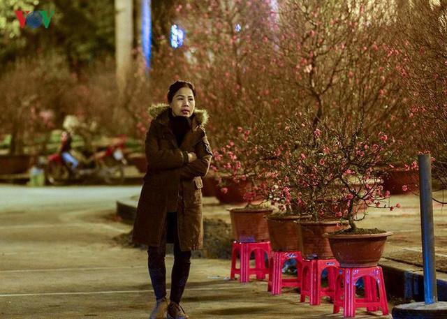 Ảnh: Tê cóng trong đêm Hà Nội lạnh dưới 10 độ C trông cây cảnh Tết - Ảnh 3.