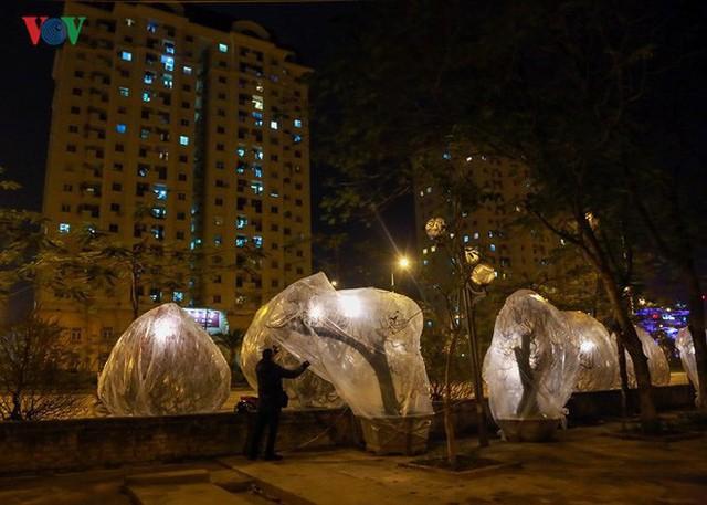 Ảnh: Tê cóng trong đêm Hà Nội lạnh dưới 10 độ C trông cây cảnh Tết - Ảnh 9.