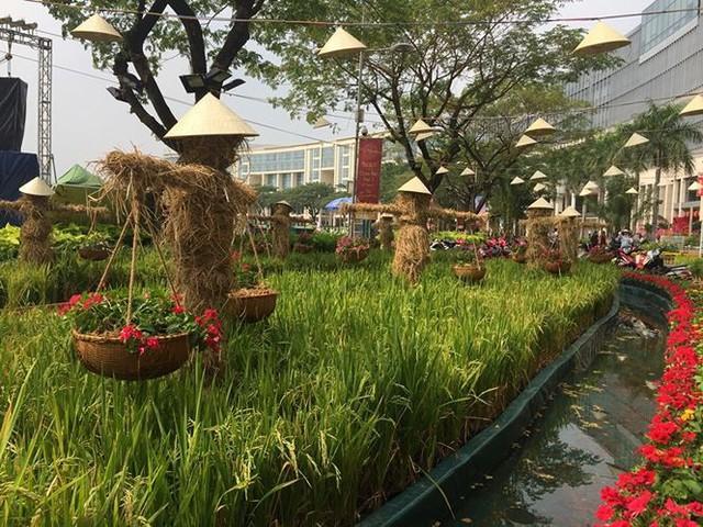 Đường hoa xuân đậm nét quê ở phố nhà giàu Sài Gòn   - Ảnh 4.