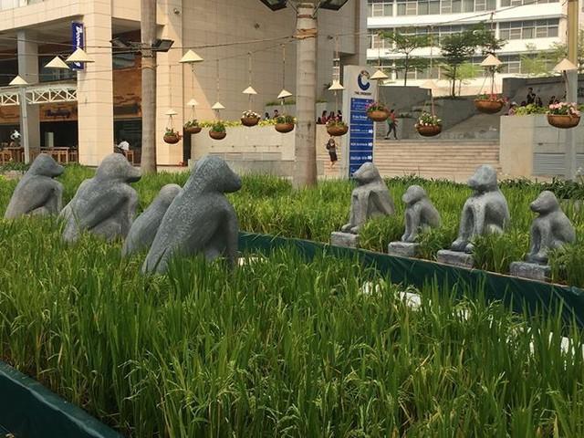 Đường hoa xuân đậm nét quê ở phố nhà giàu Sài Gòn   - Ảnh 6.