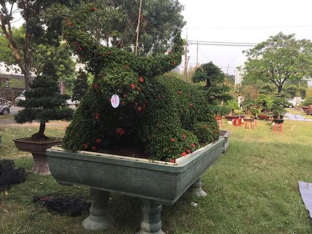 Đường hoa xuân đậm nét quê ở phố nhà giàu Sài Gòn   - Ảnh 10.