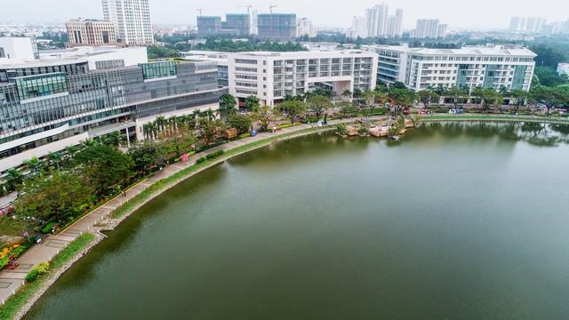 Toàn cảnh đường hoa xuân Mậu Tuất 2018 rực rỡ tại khu đô thị Ecopark và Phú Mỹ Hưng - Ảnh 6.