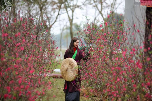 Toàn cảnh đường hoa xuân Mậu Tuất 2018 rực rỡ tại khu đô thị Ecopark và Phú Mỹ Hưng - Ảnh 8.